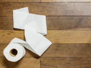 toilet paper roll on wood floor, poop 101 for ibd